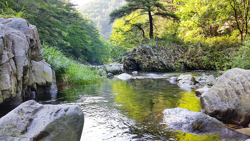 (사진+2)+강원+정선+가리왕산자연휴양림+계곡+모습입니다..jpg