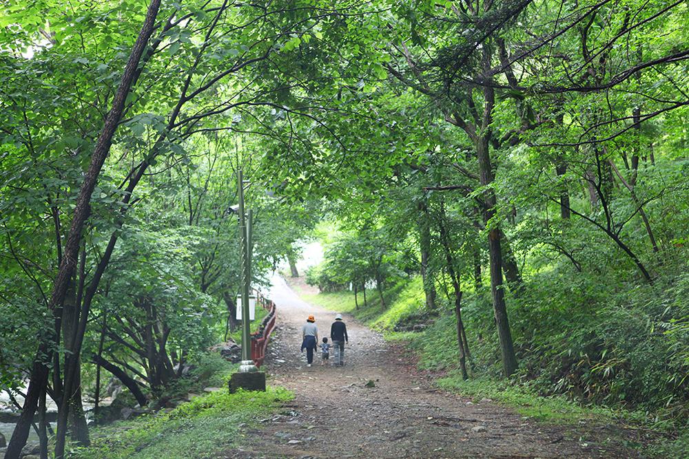 (사진+4)+전북+진안+운장산자연휴양림+내+숲+길의+모습입니다..JPG